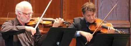Geige lernen online als Erwachsener - Kostenlose Videos für Geige